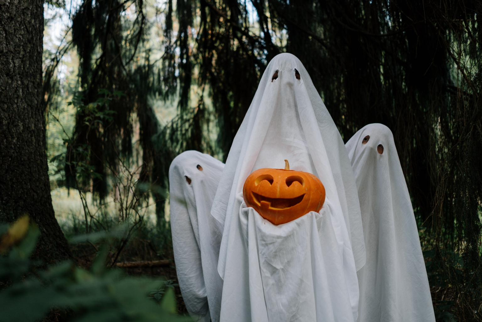 Remote Gatherings And Reunions During Halloween