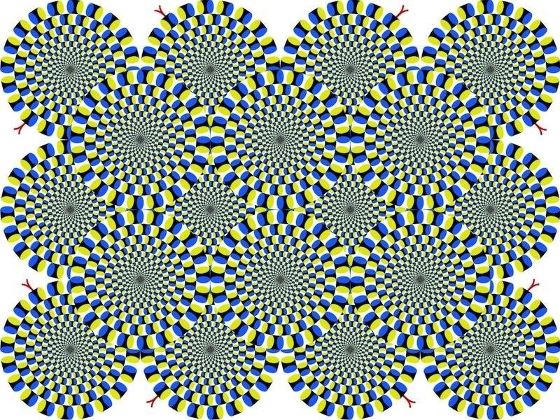 Never believe your eyes-The most interesting optical illusions