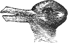 Duck or Rabbit?